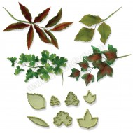 JEM Mixed Leaves - Set 2