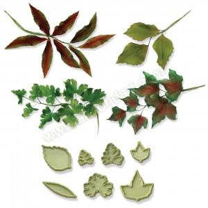 JEM Mixed Leaves No. 2 - Set of 7