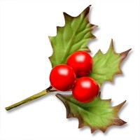 3 Holly Leaves and Large Berries Spray