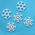 Snowflake Cutter Set - 2pc