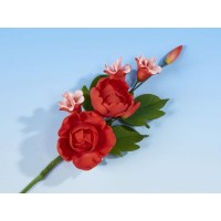 Red Peony with small blossom - Med
