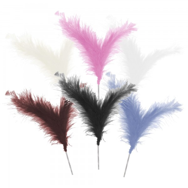 Three Feather Spray