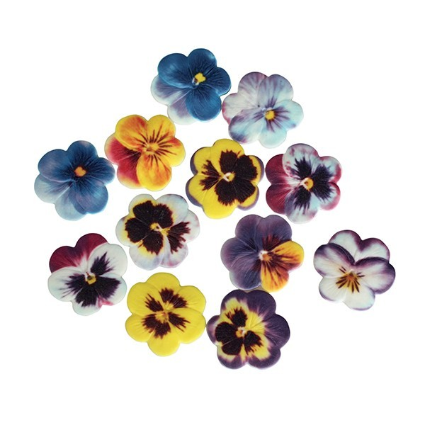 Pansies Sugarsoft - Assorted Pk/12