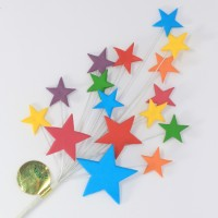 Bright Multi Coloured Star Spray